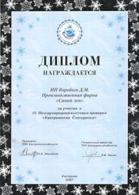 Кострома, 2007 г.